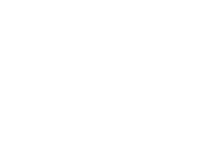 Foundation Home Inspection